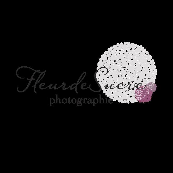 logo-FdS_pompon-gris-2